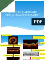 Critique of Automatic Tissue Characterization