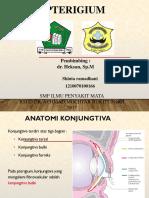 Crs Pterygium