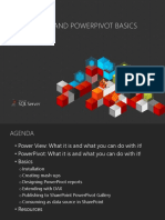 powerviewpowerpivotbasics2013sp1