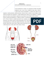 Fisiologia 6