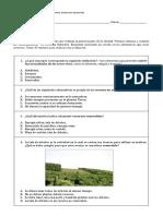 Plantas Chilenas y Cuidado Del Medioambiente, Evaluación Intermedia