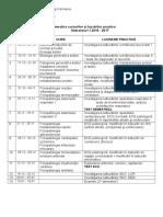 Programare-Cursuri-si-Lp_MG_Sem-I_2016-2017.doc