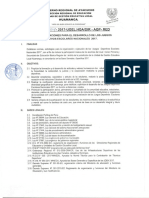 Directiva N°004 JDEN 2017 ESPECIFICAS.pdf