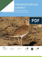 Plan de Conservación Del Chorlo Llanero
