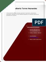 CV Hernan Torres