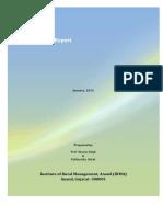 PRA Report Example