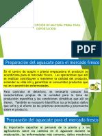 Presentación S2.pptx