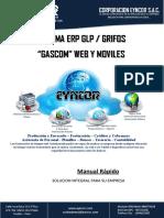 EYNCOR.erp Manual Rapido v1