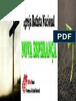 logo placa.pdf