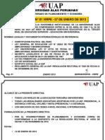 3 DIRECTIVA 001 2013 VIRPE Que-Acompana-res10568