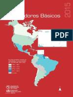 2015-cha-indicadores-basicos.pdf