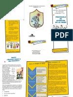 Que es la UDEEI.triptico.pdf