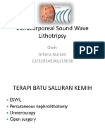 Extracorporeal Sound Wave Lithotripsy