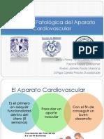 Anatomia Patologica Del Aparato Cardiovascular2.00