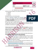 Patología Intestinal