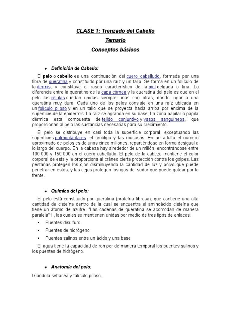 Clase 1. Teoría Del Cabello