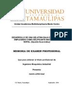 Hojas Preliminares MEMORIA Sep 2014
