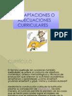 2_ ADAPTACIONES_CURRICULARES_