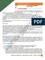 10 08 15 Anatomia Patologica Patologia Renal