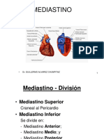 (23 - 24) Mediastino Medio - Pericardio - Corazón -- Mediastino Posterior