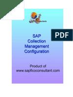 SAP_Collection_Management_Config_preview.pdf
