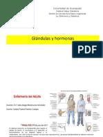 Glándulas y Hormonas