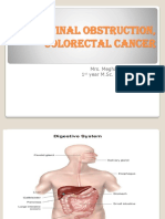 Intestinal Obstruction, Colorectal Cancer