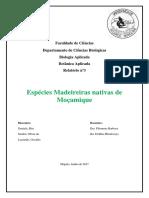 Relatório - A. Marina - Rita, Osvaldo e Rita 2