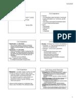Pathology notes 2009