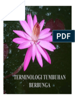 TERMINOLOGI TUMBUHAN BERBUNGA 031014 (2).pdf