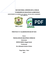 PRACTICA N°05 - ELABORACIÓN DE QUESO DE CHANCHO
