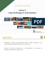 5 Flujo de Energía en El Ecosistema