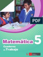 Matemática Cuaderno de Trabajo 5
