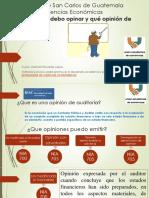 archivos-Opiniones de Auditoria.pdf