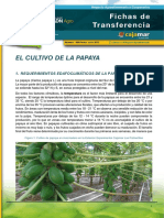 009-papaya-1441794549
