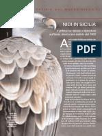 Primo Piano - Il Grifone in Sicilia