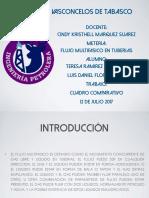 CUADRO COMPARATIVO DE PATRONE DE FLUJO EN TH.pdf