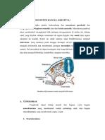 Organogenesis Sistem Rangka