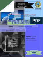 Densidad y Peso Espesifico Informe