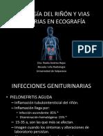 Patologia Del Riñon y Vias Urinarias en Ecografia