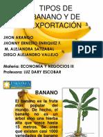 BANANO (3)EXPOSICION