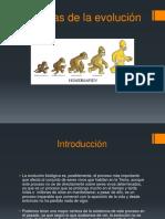Pruebas de La Evolución PD4 BIOLOGIA