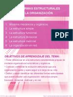 3 Las Formas Estructurales de La Organizacion