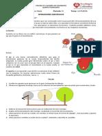 guia-rueda.pdf