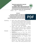 Sk Tim Audit Internal Dan Manajemen Mutu