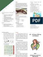 Leaflet KP ASI