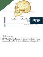 Aula 1 – Crânio e Face - Anatomia
