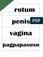 Sex & Gender Roles