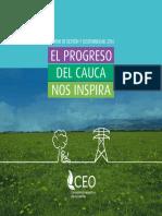 Informe de Gestión y Sostenibilidad CEO-2016