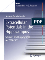Extracellular Potential in the Hippocampus